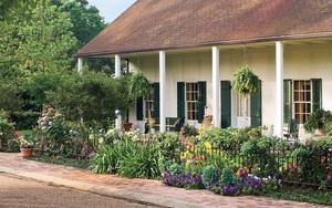 4 ý tưởng trang trí sân vườn bằng các loài hoa cho mùa hè rực rỡ