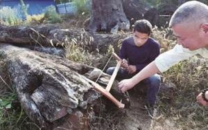Nhặt được khúc gỗ xấu xí về vứt xó 5 năm, người đàn ông không ngờ đó là gia tài 70 tỷ đồng