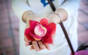 Ghé Huế, vào chùa Thiên Mụ 400 năm tuổi ngắm những đóa sala - hoa của sự yên lành