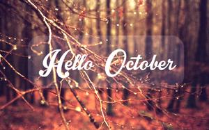 Tháng 10 này con giáp nào có chuyện tình yêu đẹp như tranh như mộng?