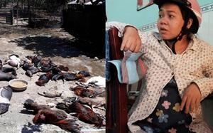 """Thai phụ nôn ói ngất xỉu, hàng chục người bỏ nhà đi """"ngủ bụi"""" sau vụ rò khí NH3 ở TP.HCM"""