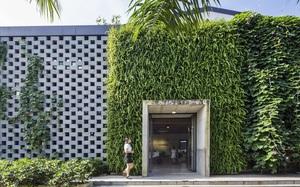 Văn phòng Việt Nam nào cũng đẹp và xanh mượt thế này, đảm bảo nhân viên chỉ muốn ở lì tại nơi làm việc