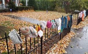 Ai cũng tò mò khi thấy quần áo giăng trên hàng rào, đến khi đọc dòng chữ này, mọi người đều mỉm cười ấm áp