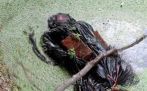 Nhẹ dạ cả tin hẹn hò qua mạng, cô gái bị cướp của, sát hại rồi buộc đá vào thi thể cho trôi sông