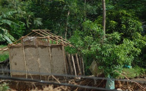 Yên Bái có 36 người chết và mất tích, thiệt hại 500 tỷ đồng do mưa lũ