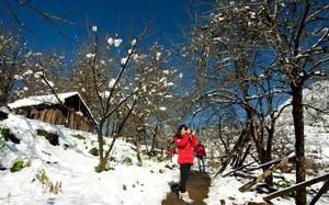 Nếu định lên Sa Pa săn tuyết dịp siêu lạnh, hãy nhớ làm đủ 5 trải nghiệm cực đáng giá này