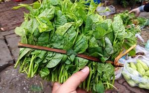 """Hà Nội: Bà nội trợ """"méo mặt"""" vì rau xanh khan hiếm, giá tăng gấp đôi sau ngập lụt"""