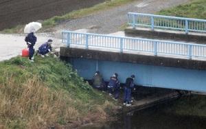 Nhật Bản: Phát hiện thi thể bé gái khoảng 10 tuổi, không mặc quần áo gần kênh thoát nước