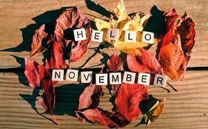 Dự báo tháng 11 đầy sắc màu cho 12 con giáp