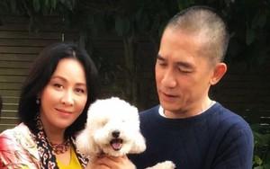 Lương Triều Vỹ - Lưu Gia Linh khoe ảnh đầu xuân, mãn nguyện với cuộc sống hiện tại dù không con cái