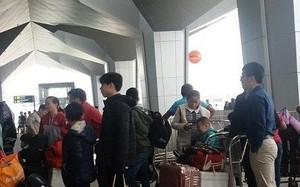 Hàng chục chuyến bay bị hủy, hàng nghìn hành khách vật vã tại sân bay