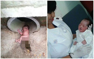 Hình ảnh gây sốc về bé sơ sinh bị bỏ rơi giữa đàn kiến lửa, dưới ống thoát nước