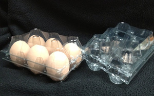 Cả nhà cằn nhằn vì mẹ thu gom hộp đựng trứng nhưng thấy thành quả vài tuần sau, ai cũng hối hận