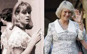 """""""Tình địch"""" số một của Công nương Diana - Camilla Parker chắc hẳn là người phụ nữ có phong cách thời trang giản dị nhất Hoàng gia Anh"""