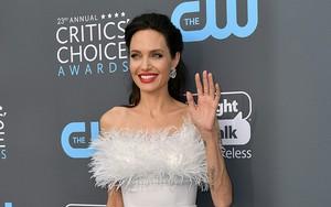 Thân hình gầy gò là vậy nhưng Angelina Jolie vẫn táo bạo khoe lưng trần trên thảm đỏ