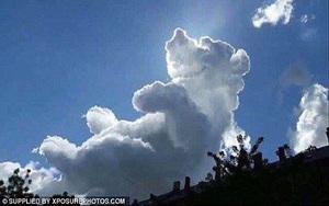 Đám mây giống hệt chú gấu nằm ngửa trên bầu trời
