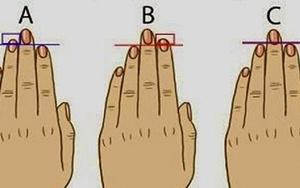 Độ dài ngón tay tiết lộ điều gì về con người bạn?