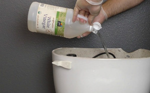 """Toilet sẽ không còn màu vàng bẩn và mùi khó chịu, chỉ nhờ đúng 1 nguyên liệu """"thần kỳ"""""""