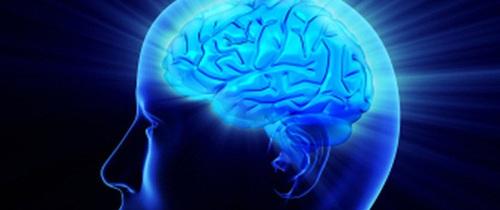 Các nhà nghiên cứu khuyên nên làm việc này ở độ tuổi 20 để ngăn ngừa teo não ở độ tuổi 40