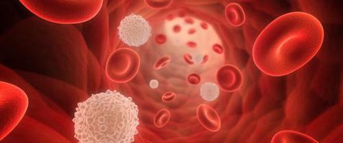 8 nguyên nhân khiến nồng độ huyết sắc tố trong máu cao đột biến, dẫn đến nhiều vấn đề sức khỏe