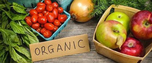 Ngày Môi trường Thế giới, hãy bổ sung thêm 9 thói quen ăn uống thân thiện với môi trường