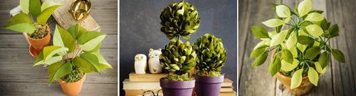 3 cách làm chậu cây xanh mát trang trí góc nhà thêm xinh