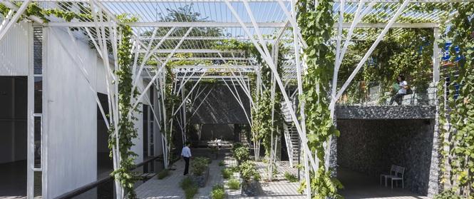 Ngắm khu vườn 600m² xanh mướt mát, đẹp như thơ ở Quận 9 trên báo Tây
