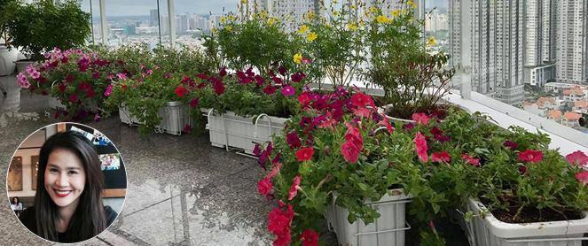 Ban công trên cao rực rỡ sắc hoa và rau sạch của diễn viên Thân Thúy Hà