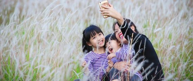 """Cánh đồng bông lau đẹp như trong phim - """"thiên đường sống ảo"""" mới của giới trẻ Hà Nội"""