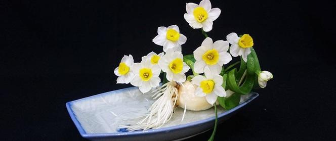 Chàng trai yêu hoa hướng dẫn tỉ mỉ cách gọt thủy tiên đẹp dịu dàng đón Tết