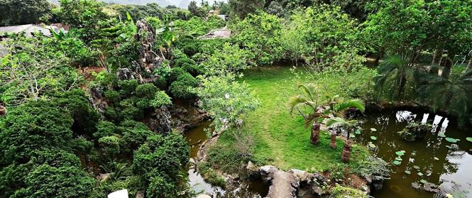 """Nhà vườn xanh mát bóng cây, hoa nở đẹp đến """"nghẹt thở"""" cách Hà Nội 45 phút chạy xe"""