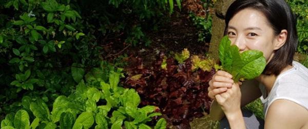Khu vườn rau sạch xinh xắn của vợ chồng tài tử Bae Yong Joon trong biệt thự triệu đô