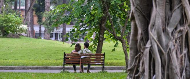 """Trong nắng, Sài Gòn vẫn có những khoảnh khắc lắng dịu mát """"lịm tim"""" thế này đây"""