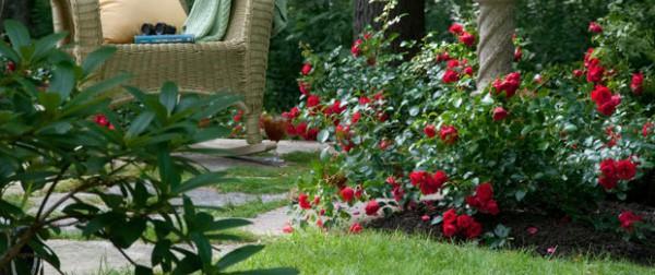 Rộn ràng hương sắc xuân trong sân vườn nhờ những ý tưởng làm đẹp sáng tạo
