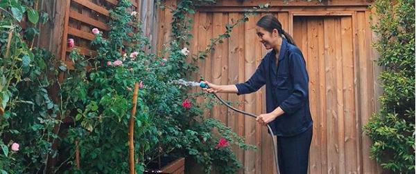 Góc vườn đẹp nên thơ và bí quyết trồng hồng nở rực rỡ của người đẹp Tăng Thanh Hà