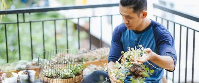 Chàng họa sĩ 9x độc thân ở Sài Gòn với thú vui làm tiểu cảnh Terrarium khiến vạn người mê