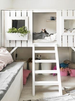 Thiết kế nhà cho thú cưng