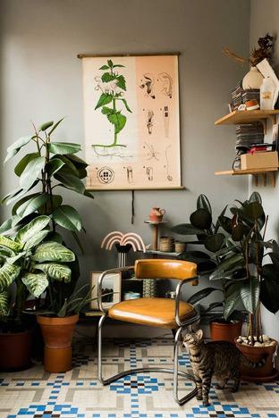 Tạo không gian xanh cho phòng khách