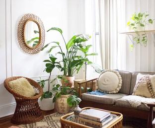 Phòng khách với cây xanh mát mắt