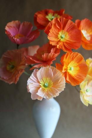 Làm hoa poppy từ giấy lụa