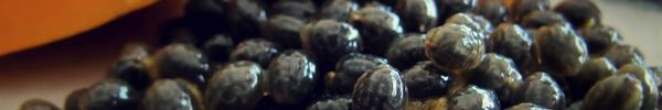 Mỗi ngày 1 thìa hạt đu đủ, giải độc gan thận, phòng chống ung thư và cải thiện sức khỏe toàn diện