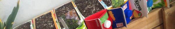 10 ý tưởng tái chế những món đồ cũ phổ biến trong nhà thành chậu gieo hạt lý tưởng
