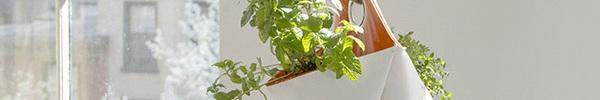 15 thiết kế chậu trồng cây gia vị thông minh và hiện đại cho những không gian nhỏ