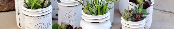 Những ý tưởng tận dụng lọ thủy tinh cũ làm lọ hoa, chậu cây siêu xinh