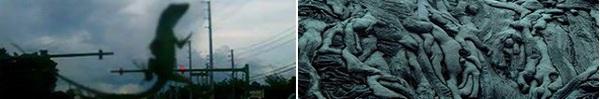 Những hình ảnh gây hiểu lầm khiến bạn phải căng mắt nhìn đi nhìn lại