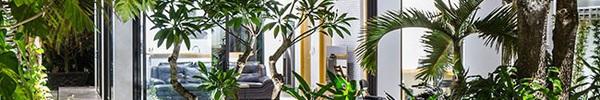 Mê mẩn với ngôi nhà vườn lợp mái lá dừa đẹp ngang khu nghỉ dưỡng cao cấp ở Trà Vinh
