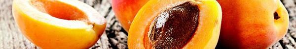 Trang bị ngay loại quả vàng này trong nhà bạn để chữa ho tại nhà mà không cần dùng đến kháng sinh