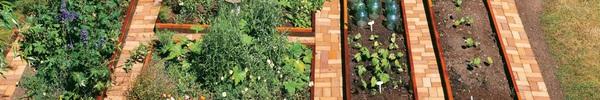 10 cách trang trí vườn xinh để khách đến chơi nhà phải xuýt xoa khen ngợi