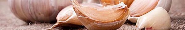 2 tép tỏi và 1 thìa mật ong: Vừa giảm cân nhanh lại cực tốt cho hệ tiêu hóa