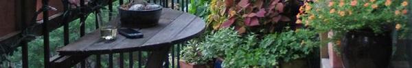 10 góc vườn xinh trên ban công nhỏ đẹp đến bất ngờ
